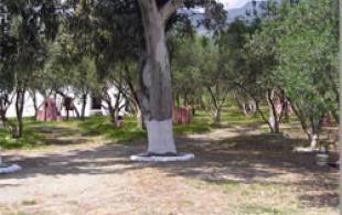 campsite plakias crete